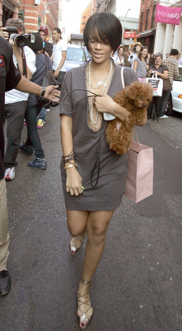 rihanna-walking-her-puppy-22